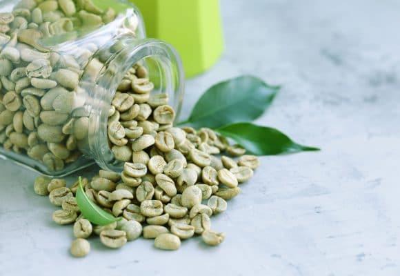 Zielona kawa, charakterystyka i właściwości