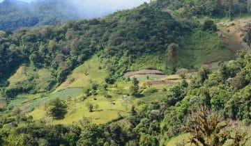 Farma Esmeralda – wysoka jakość i renoma