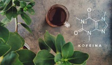Ile jest kofeiny w filiżance kawy?