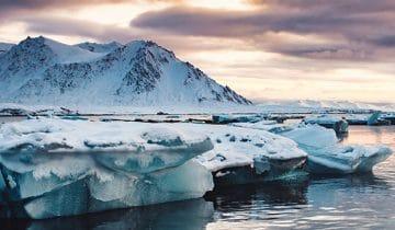 KawePale na Spitsbergenie – czyli jak kawa z podwarszawskiej  palarni trafiła na biegun?